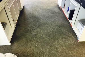 Photo #2: Professional Carpet/Upholstery cleaning 3 rooms 60dlls
