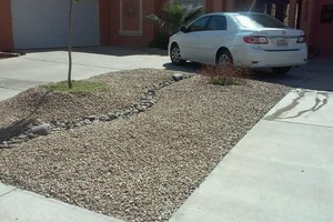 Photo #2: Landscape and maintenance - trash removal, clean yards