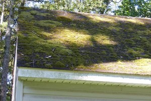 Photo #8: PHILLIPS POWERWASH - ROOF/GUTTER CLEANING