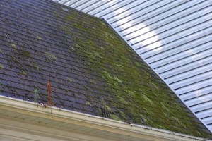 Photo #6: PHILLIPS POWERWASH - ROOF/GUTTER CLEANING