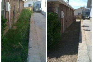Photo #8: YARD CLEANING AND MAINTENANCE