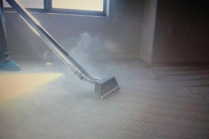 Photo #4: DE Carpet Cleaning. Gauranteed Pet Odor Removal! 17 Years Experience!