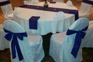 Photo #6: Culinary Adventures Catering. Wedding Catering & Decorations