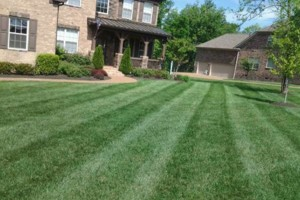 Photo #9: Brooks Lawn Care - Free Quotes - Quality and Affordable