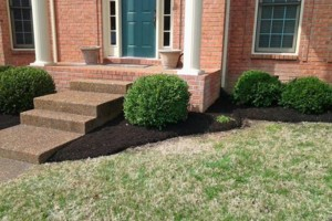 Photo #7: Brooks Lawn Care - Free Quotes - Quality and Affordable