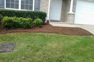 Photo #5: Brooks Lawn Care - Free Quotes - Quality and Affordable