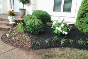 Photo #2: Brooks Lawn Care - Free Quotes - Quality and Affordable