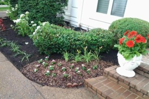 Photo #1: Brooks Lawn Care - Free Quotes - Quality and Affordable