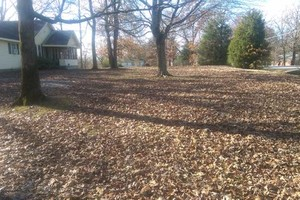 Photo #2: Steve's Lawn Care. Leaf Clean up/Brush clean up