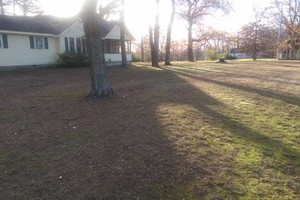Photo #1: Steve's Lawn Care. Leaf Clean up/Brush clean up