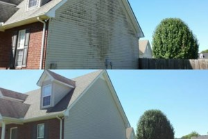 Photo #5: RESIDENTIAL PRESSURE WASHING SERVICE. Bumblebee Cleaners