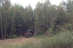 Photo #7: Land And Site Contractors, LLC. Land Maintenance