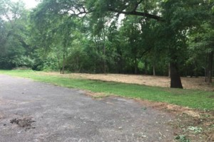 Photo #3: Land And Site Contractors, LLC. Land Maintenance