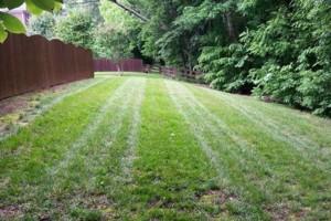 Photo #9: Pride Lawns - Lawn Care!