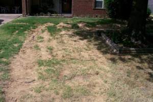 Photo #18: Edwards Home Improvement & Landscaping