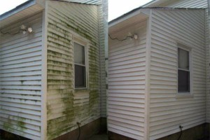 Photo #1: King's Power washing/Outdoor maintenance