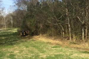 Photo #3: Forestry Mulching and Land Clearing