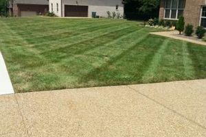 Photo #1: Lawn care Service. Call for season of 2016!