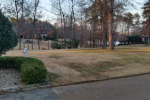 Photo #4: Grassworks Landscape. Leaf Removal