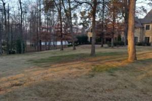 Photo #3: Grassworks Landscape. Leaf Removal