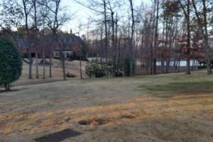 Photo #2: Grassworks Landscape. Leaf Removal