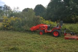 Photo #3: Mowing /bush hogging /clean up