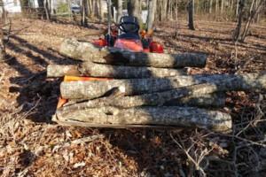 Photo #2: Mowing /bush hogging /clean up