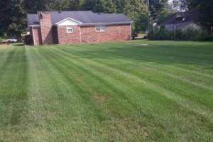Photo #3: Full-service Lawn Care & Landscape