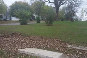 Photo #2: Full-service Lawn Care & Landscape