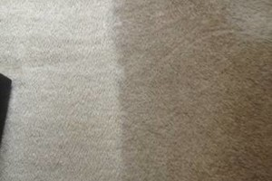 Photo #9: CARPET CLEANING SPECIAL! 5 Rooms + Hallway $65