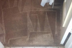 Photo #7: CARPET CLEANING SPECIAL! 5 Rooms + Hallway $65