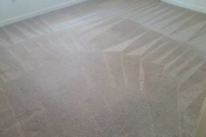 Photo #3: CARPET CLEANING SPECIAL! 5 Rooms + Hallway $65