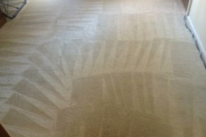 Photo #1: CARPET CLEANING SPECIAL! 5 Rooms + Hallway $65