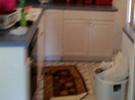 Photo #6: Clean Slate (Residential & Commercial Cleaning)