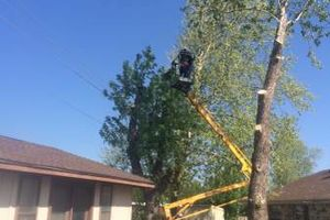 Photo #9: Spring weather is coming...Protect your property - tree trimming