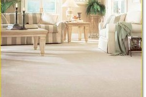 Photo #1: 1st Class Carpet Steam Cleaning