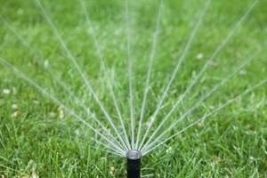 Photo #2: Sprinkler Repairs