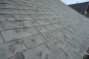 Photo #3: WCS Contractors Inc. Roofing, Siding, Guttering