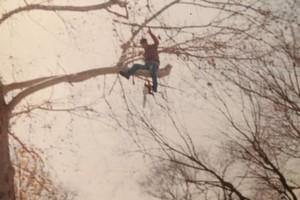 Photo #5: Valentines professional tree service