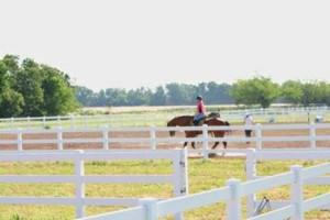 Photo #4: Horse Boarding, NE Oklahoma City Metro- $250. Full care!