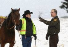 Photo #10: Horse Boarding, NE Oklahoma City Metro- $250. Full care!