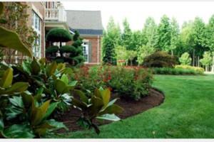 Photo #3: Lippert Enterprises. Landscaping
