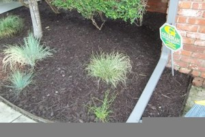 Photo #6: JIMMY & CONNIE'S LANDSCAPING