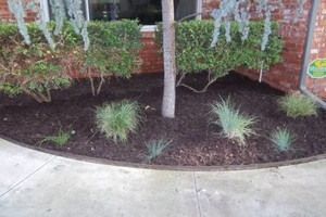 Photo #5: JIMMY & CONNIE'S LANDSCAPING