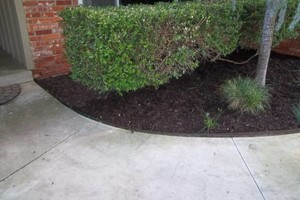 Photo #1: JIMMY & CONNIE'S LANDSCAPING