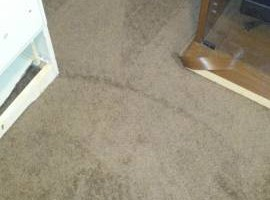 Photo #3: Master Carpet Skills!!