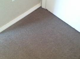 Photo #2: Master Carpet Skills!!