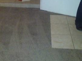 Photo #1: Master Carpet Skills!!