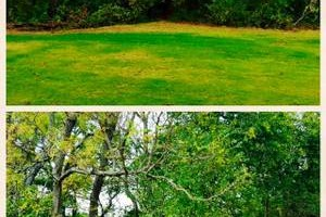 Photo #6: 76 Land Services, LLC. Land Clearing, Tree Removal, Mulching/Dirt Work