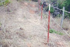 Photo #14: Farm Fence Work
